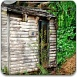 树林小木屋2