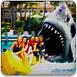 迈阿密鲨鱼的复仇1.23