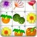 蔬菜水果连连看