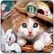 可爱猫咪找数字5