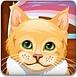 可愛小貓護理