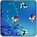 圈圈热带鱼