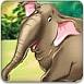 叢林大象找東西