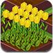 種植美麗的花朵