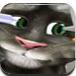 給湯姆貓做眼睛護理