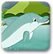 海豚穿越太平洋