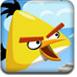 观察愤怒小鸟图片